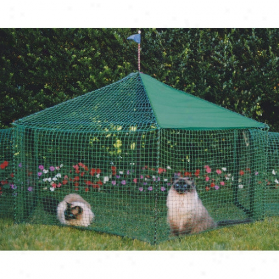 Kittywalk Systems Gazboe Outdoor Pet Enclosure