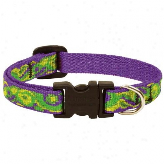 Lupine Inc 98537 8in-12in Big Easy Cat Safety Collar With Breakaway Buckle
