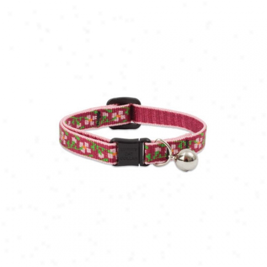 Lupine Pet Cherry Blossom 1/2'' Adjustable Cat Preservation Collar