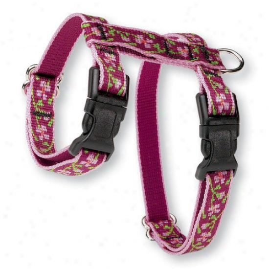 Lupine Pet Cherry Blossom 1/2'' Adjustable H-style Cat Harness