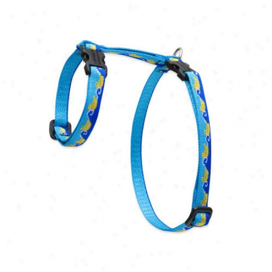 Lupine Pet Just Ducky 1/2'' Adjustable H-style Cat Harness