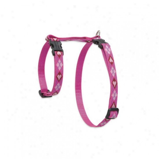 Lupine Pet Puppy Love 1/2' Adjustable H-style Cat Harness