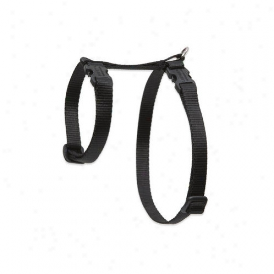 Lupine Pet Solid Color 1/2'' Axjustable H-style Cat Harness