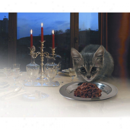 Molor Products Fancy Treat Cat Dish