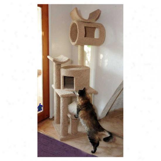 New Cat Condos Cat Playstatiion