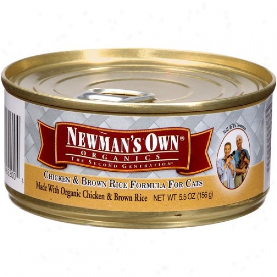 Newmans Own Organics 61344 Organic Chicken & Rice Cat Food Can