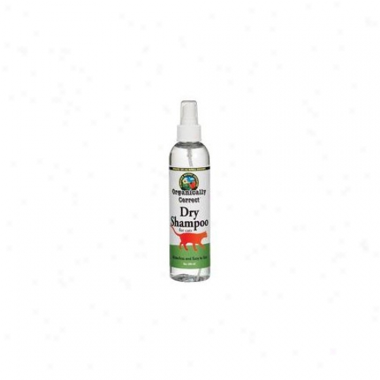 Organically Correct Dry 8 Oz. Shampoo For Cats
