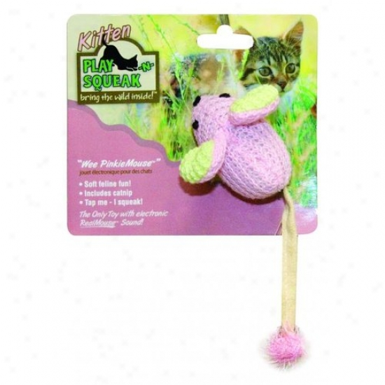 Ourpets Kt-10358 Play-n-squeak Wee Cat Toy