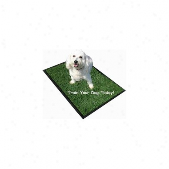 Perfect Puppy Potty Pws22 Potty 32 Infh X 22 Inch