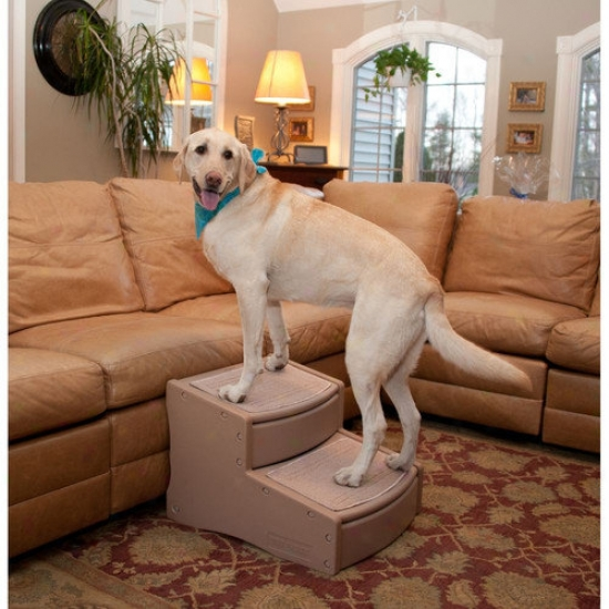 Pet Gear Easy Steps Ii Extra Wide Pet Stairs