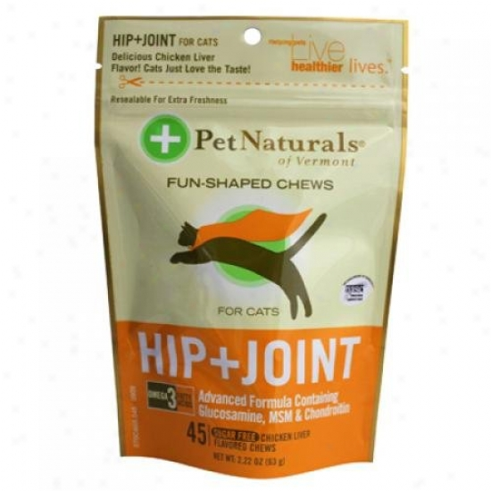 Favorite Naturals Of Vermont Hip And Joint For Cats Chicken Liver 45 Soft Chews