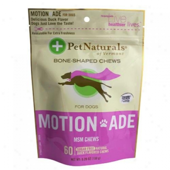 Pet Natural Of Vermont Motion Ade Msm Chews For Dogs And Cats 60 Chew