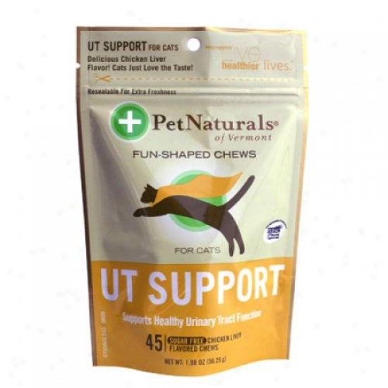 Pet Naturals Of Vermont Ut Support For Cats Chidken Liver 45 Soft Chews