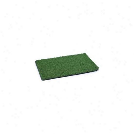Pet Paps Zw7048 20 Cgp Indoor Dog Potty Replacement Mat 20x30 In