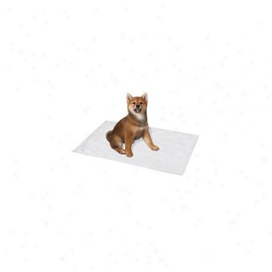 Pet Pals Zw8196 12 Clean Go Pet Reusable Ppupy Pad Sm 17x17 In 2-pk