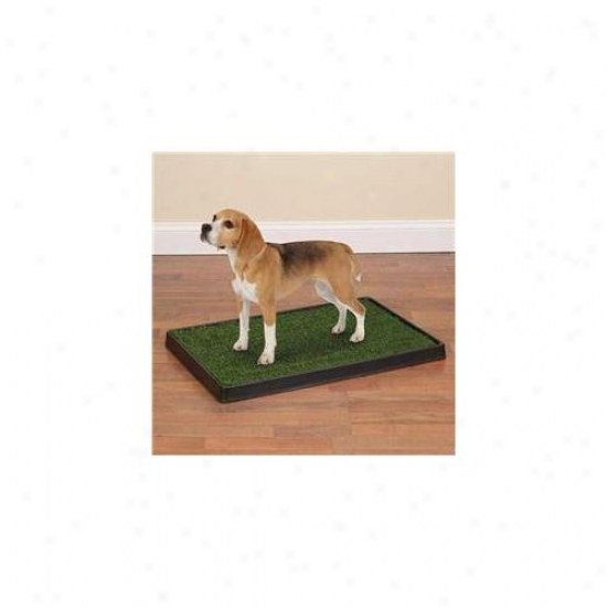 Petedge Zw7047 27 Clean Go Pet Indoor Dog Potty 27x40 In