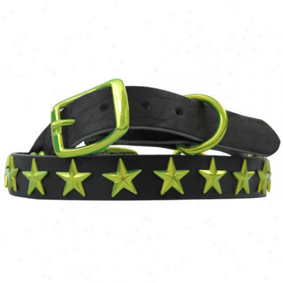 Platinum Pets 15'' Pure Leather Cat / Puppy Collar With Stars In Corona Lime
