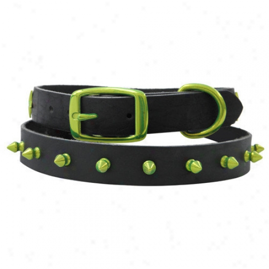 Platinum Pets 15'' Genuine Leather Cat / Pupoy Collar With Spikes In Corona Lime