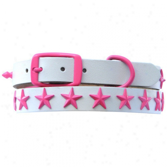 Platinum Pets 15'' Genuine White Leather Dog Collar With Stars