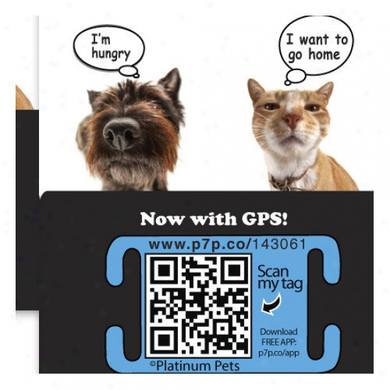 Platinum Pets The Original Smartphone Collar Id Cat Tag With Gps