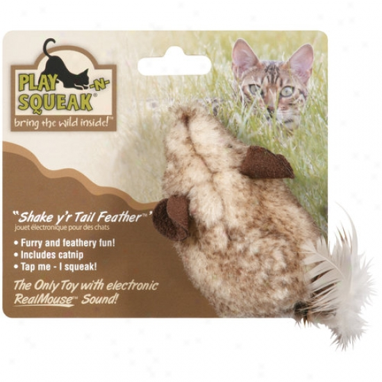 Play-n-squeak Shake Yr Tail Feather Cat Toy