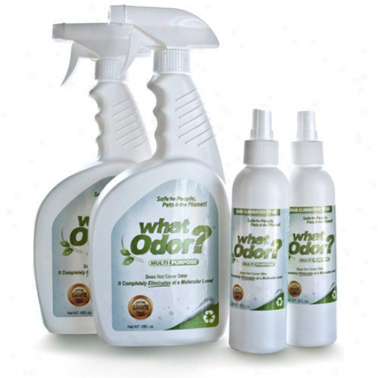 Prestige Angry mood Products Pet Odor Removwr Outfit