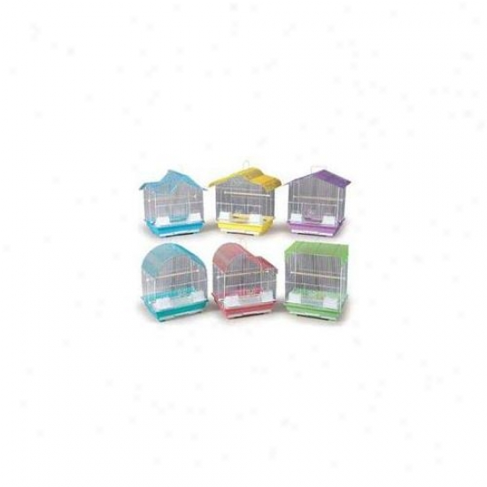 Prevue Pet Products Bpv22006 Pastel Keet Cage Assorting 6-pack