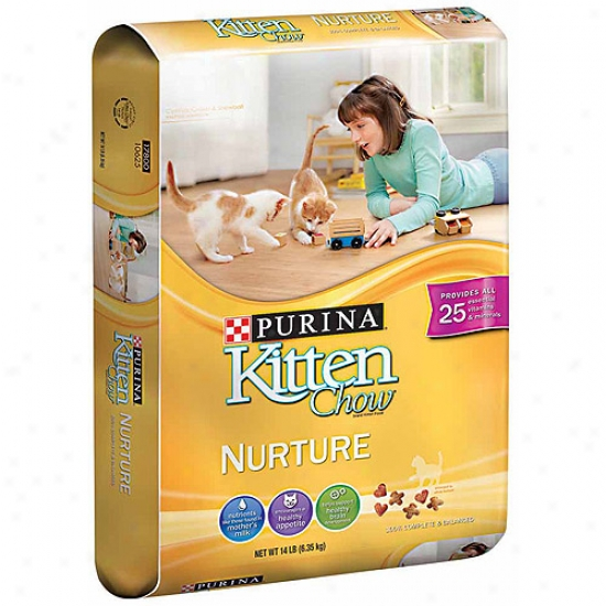 Purina Kitten Chow Nurture Cat Food, 14 Lbs