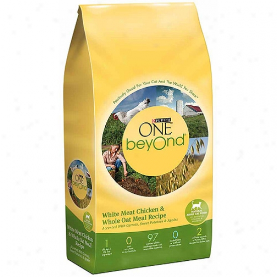 Purina One B3yond Adult Chlcken And Whole Oat Meal Recipe Cat Food, 6 Lbs