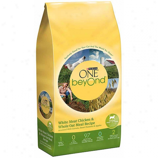Purina One Beyond Ad8lt Chicken And Whole Oat Meal Recipe Cat Food, 3 Lbs