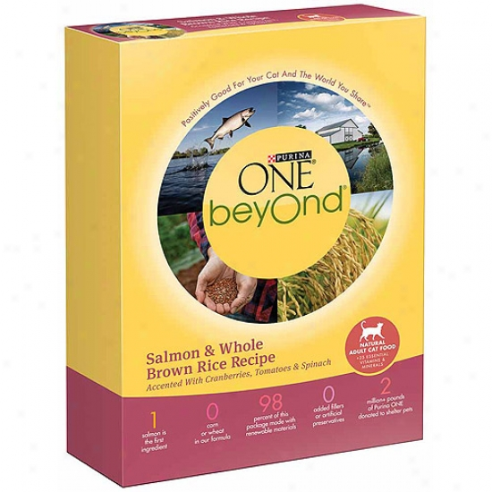 Purina One Beyond Adult Salmon And Whole Brown Rice Recipe Cat Food, 16 Oz