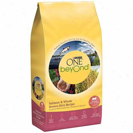 Purina One Beyond Adult Salmon And Whole Brown Rice Recipe Cat Food, 3 Lbs