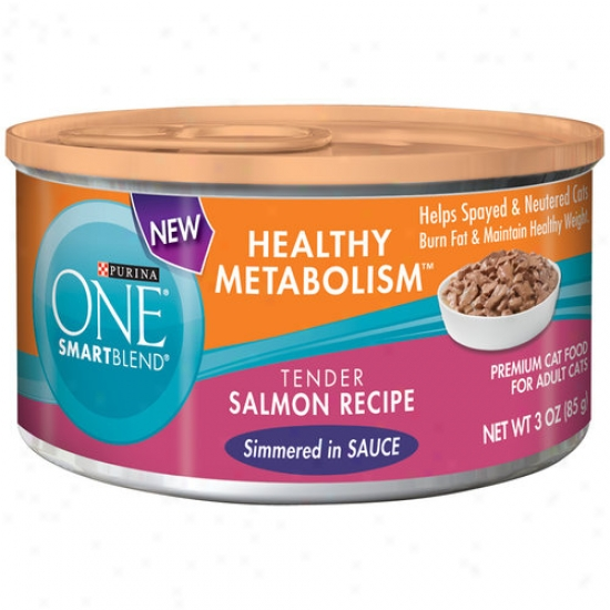 Purina One Healthy Metabolism Cat Foo,d Tender Salmon Recipe, 3 Oz