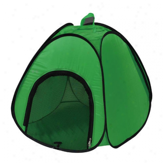 Pyara Paws 2 In 1 Movable Pet Tent