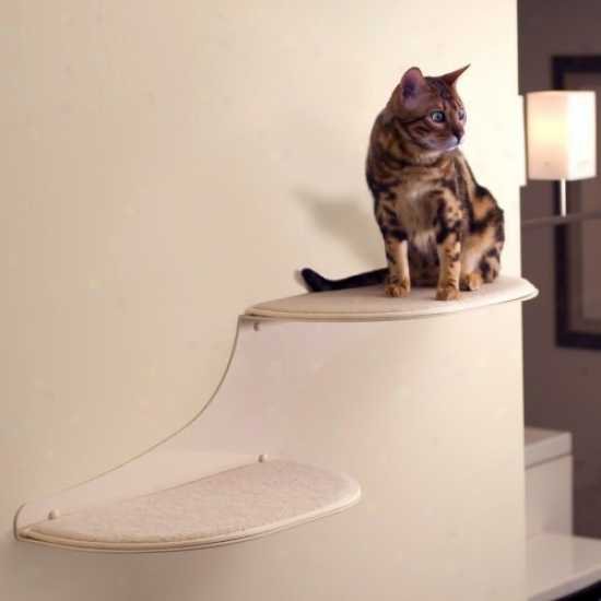 Purified Feline Cat Clohd Cat Shelf - Off Wjite