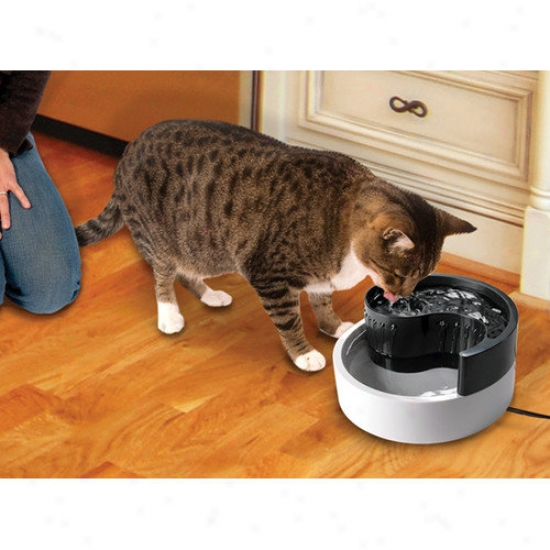 Smartcat Fung Shui Soft Fountain