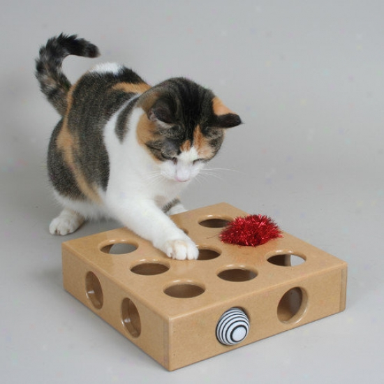 Smartcat Peek And Play Play Box