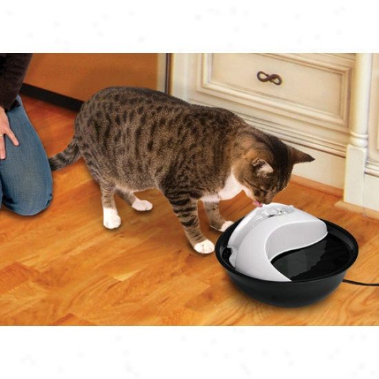 Smartcat Soft Drinking Fountain