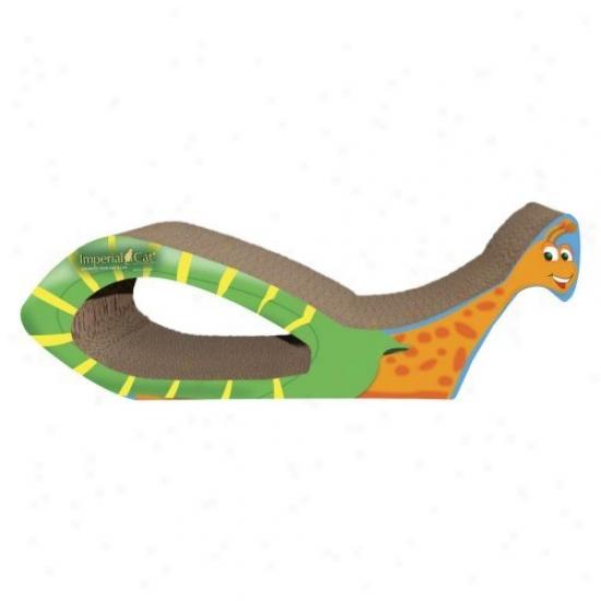 Snail Scratch N Shape