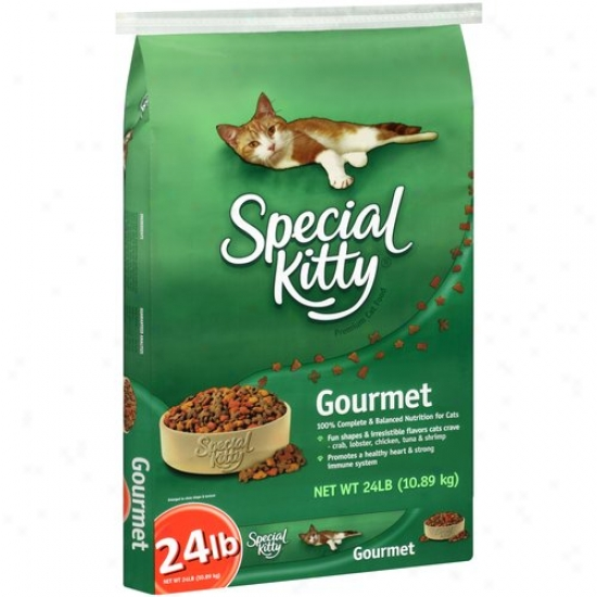 Special Kitty Gourmet Cat Food, 24 Lb