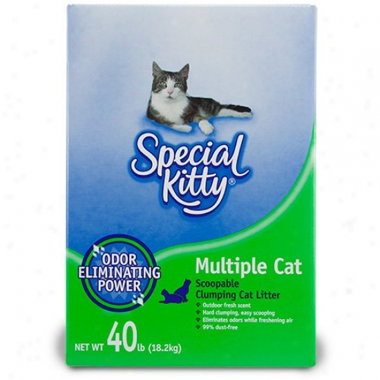Special Kitty Multiple Cat Scoopable Clumping Cat Litter, 40 Lb