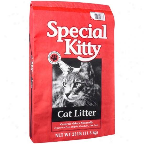 SpecialK itty: Natural Cat Litter, 25 Lb