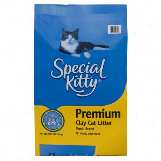 Special Kitty: Premium Cat Litter, 25 Lb