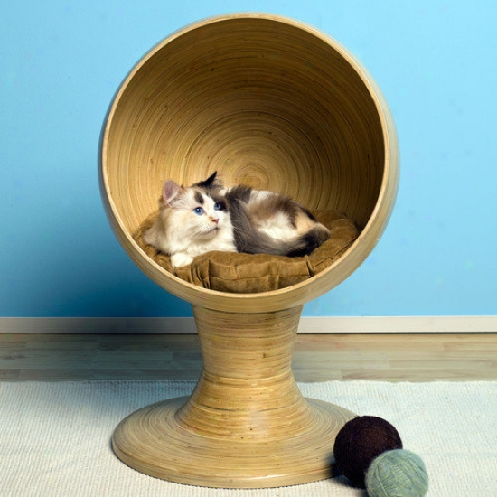 The Purified Feline Kitty Ball Bamboo Cat Bed