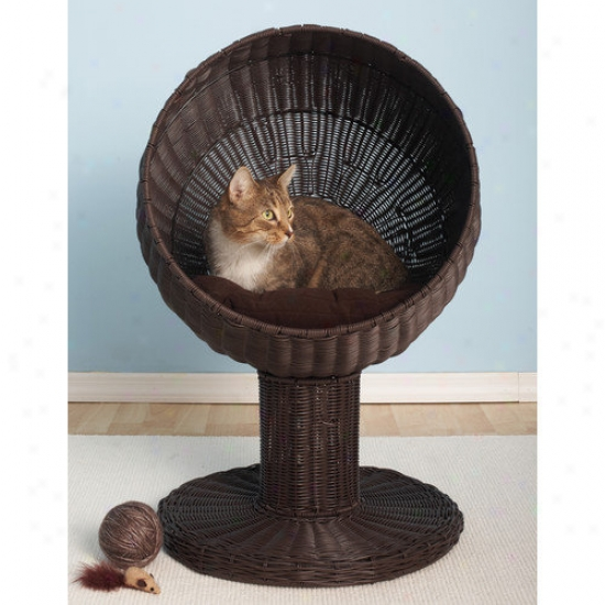 The Refined Feline Kitty Missile  Rattan Cat Bed In Espresso