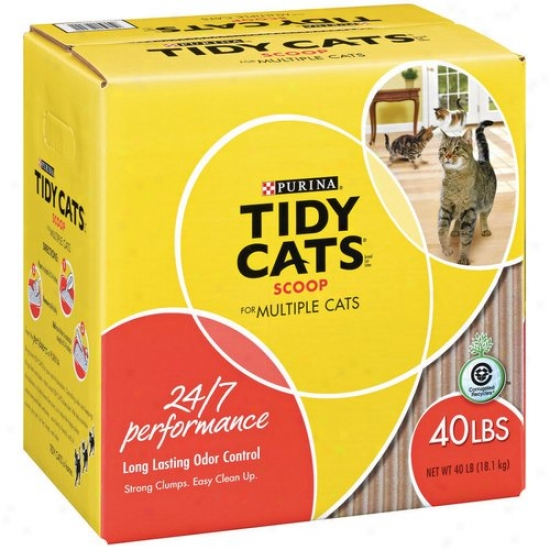 Tudy Cats Scoop Multiple Cats Cat Litter, 40 Lbs