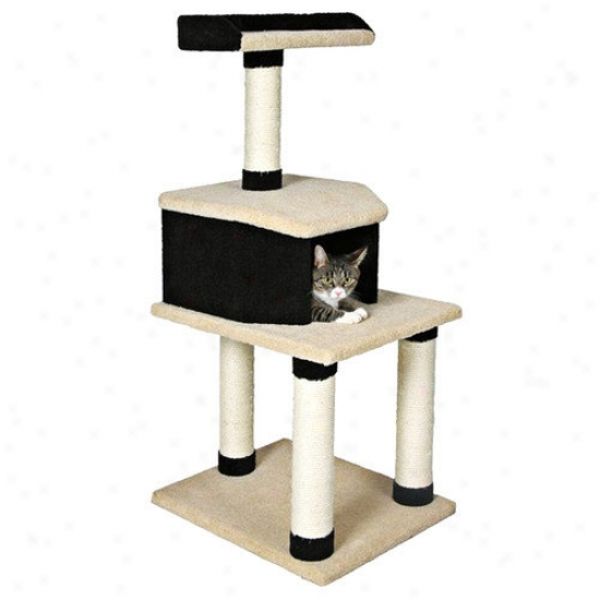 Trixie Pet Products Manolo Cat Tree