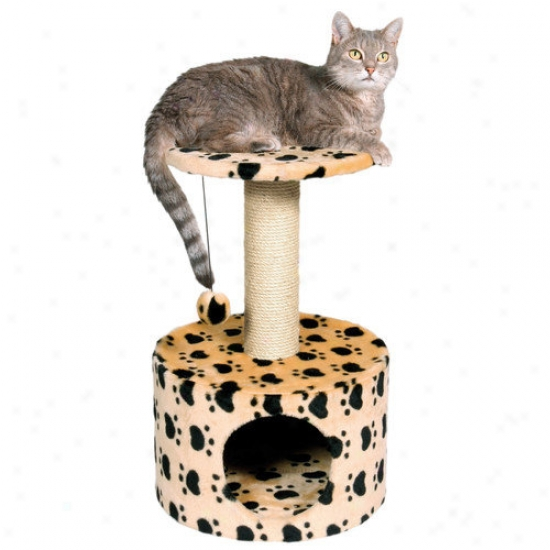 Trixie Pet Products Toledo Paw Print Cat Condo