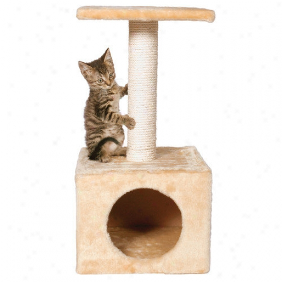 Trixie Pet Products Zamora Kitten Tree