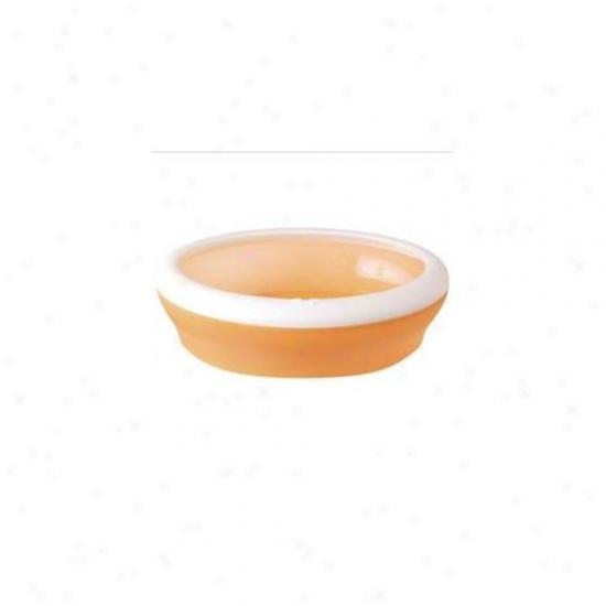 United Pets Gi0500ar Viccci Cat Litterbox- Orange